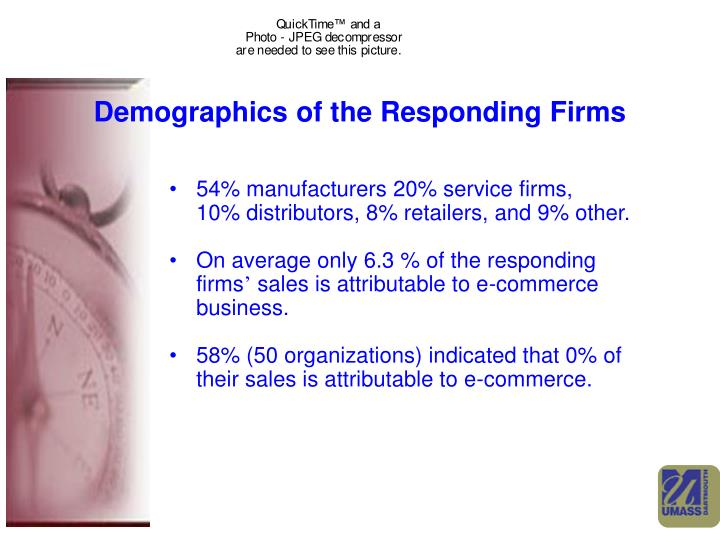 Demographics of the Responding Firms