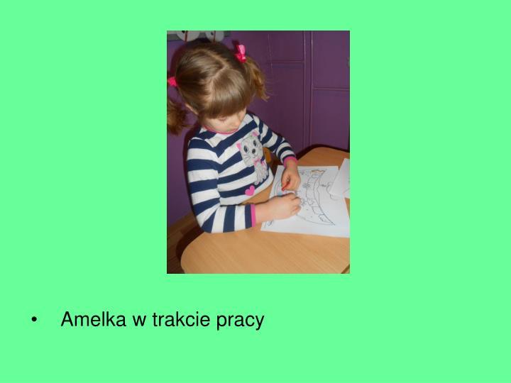 Amelka w trakcie pracy