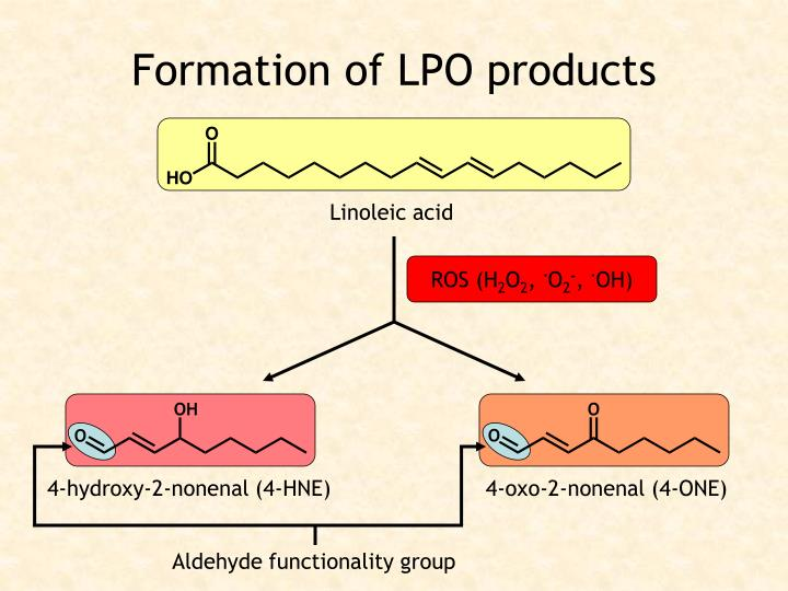 Aldehyde functionality group
