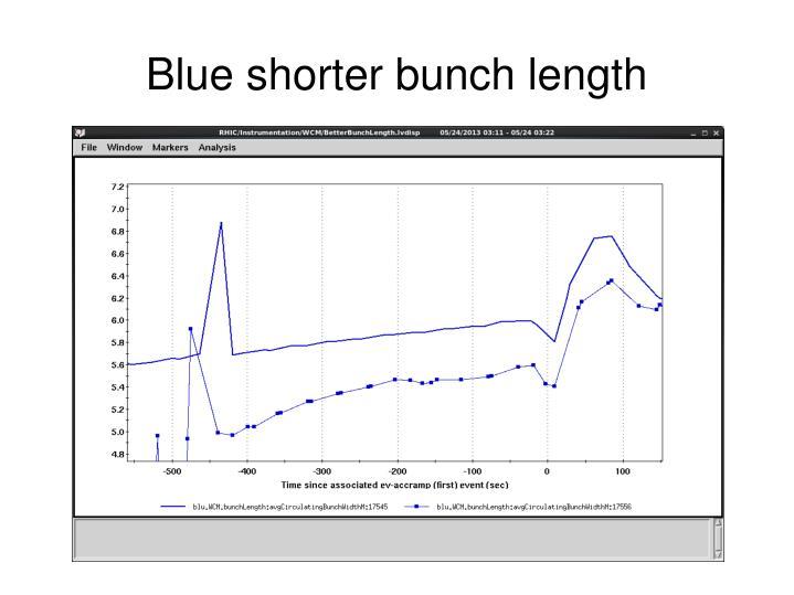 Blue shorter bunch length