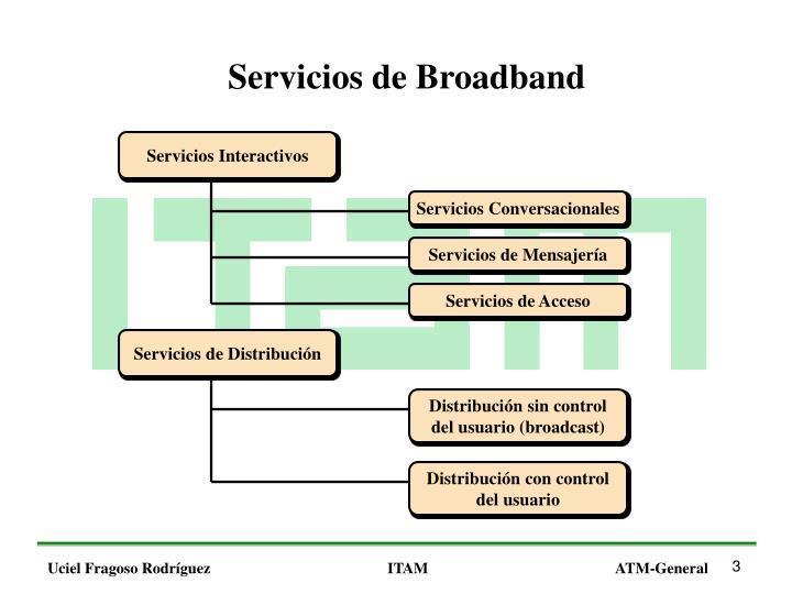 Servicios de Broadband