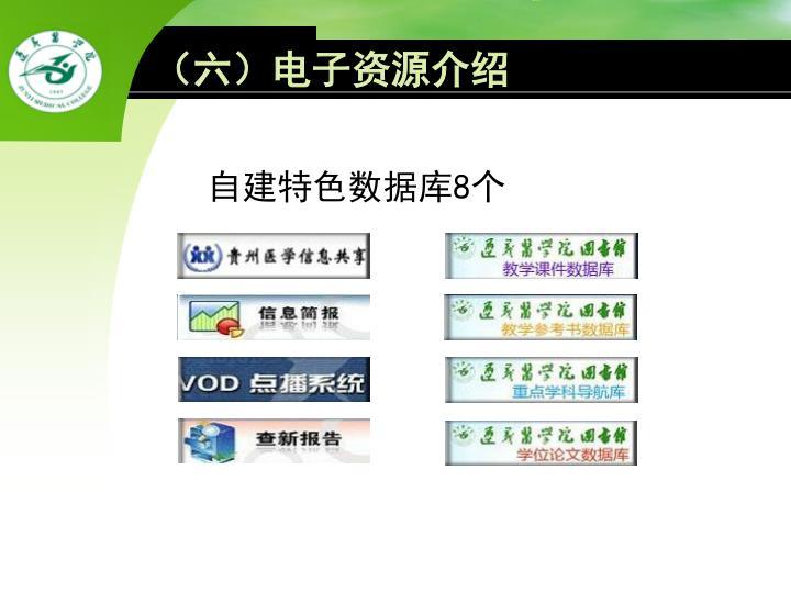 (六)电子资源介绍