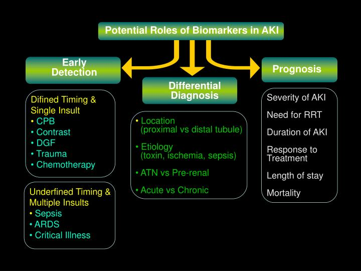 Potential Roles of Biomarkers in AKI