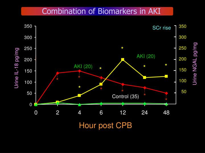 Combination of Biomarkers in AKI