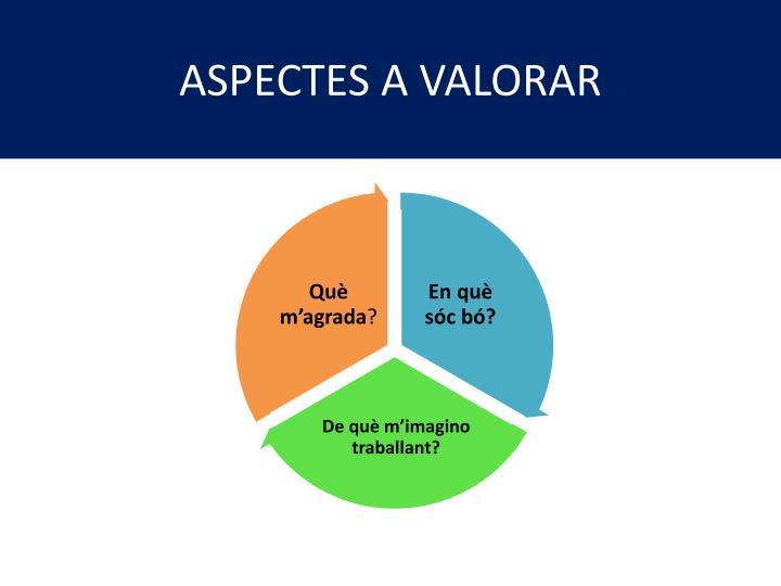 ASPECTES A VALORAR