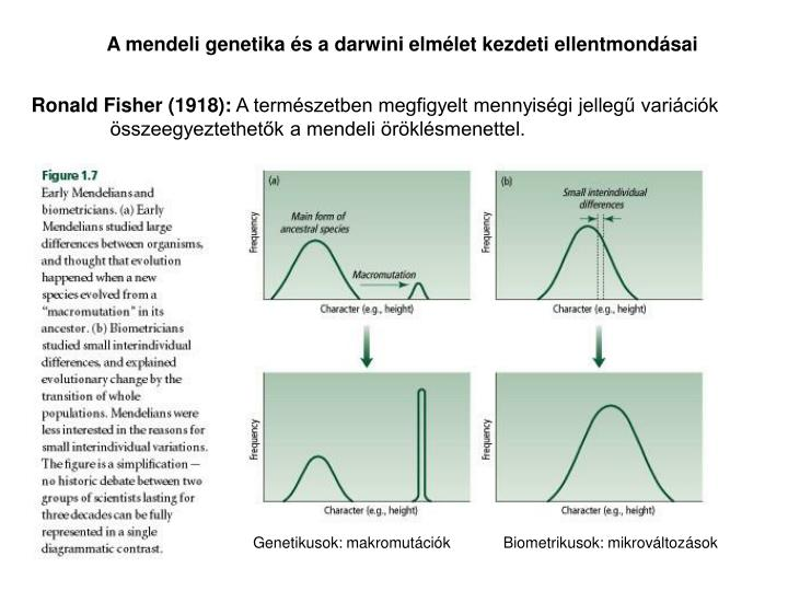 A mendeli genetika s a darwini elmlet kezdeti ellentmondsai