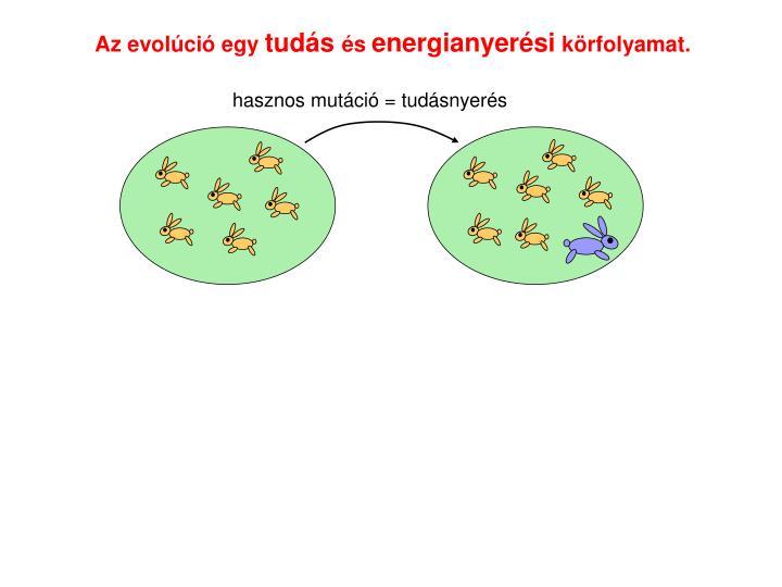 Az evolci egy