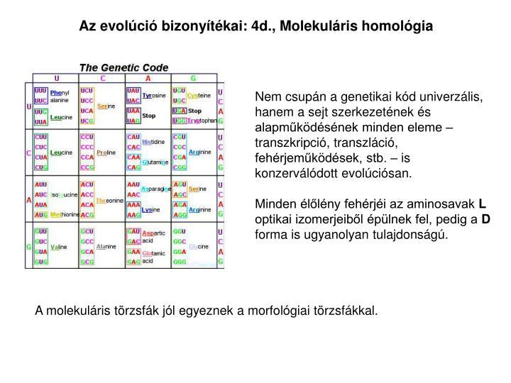 Az evolci bizonytkai: 4d., Molekulris homolgia
