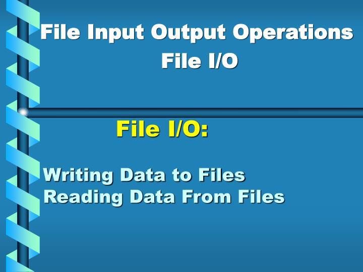 File I/O: