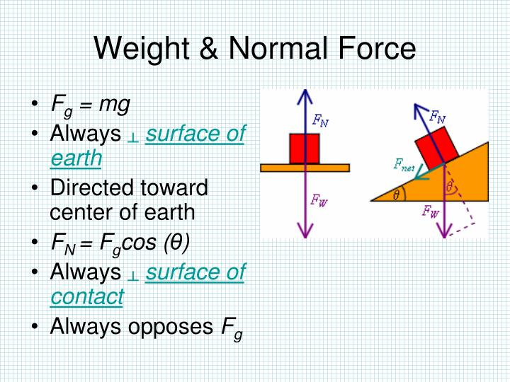 Weight & Normal Force