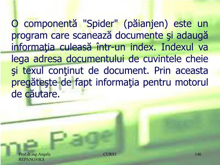 """O componentă """"Spider"""" (păianjen) este un program care scanează documente şi adaugă informaţia culeasă într-un index. Indexul va lega adresa documentului de cuvintele cheie şi texul conţinut de document. Prin aceasta pregăteşte de fapt informaţia pentru motorul de căutare."""