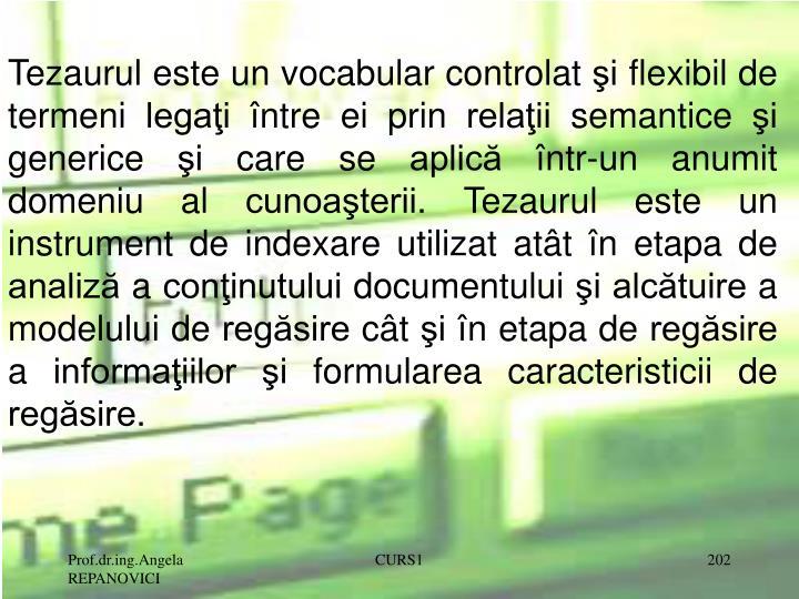 Tezaurul este un vocabular controlat şi flexibil de termeni legaţi între ei prin relaţii semantice şi generice şi care se aplică într-un anumit domeniu al cunoaşterii. Tezaurul este un instrument de indexare utilizat atât în etapa de analiză a conţinutului documentului şi alcătuire a modelului de regăsire cât şi în etapa de regăsire a informaţiilor şi formularea caracteristicii de regăsire.