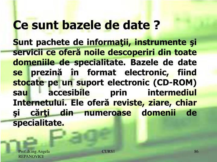 Ce sunt bazele de date ?