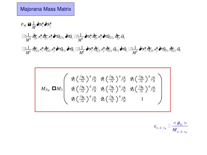 Majorana Mass Matrix