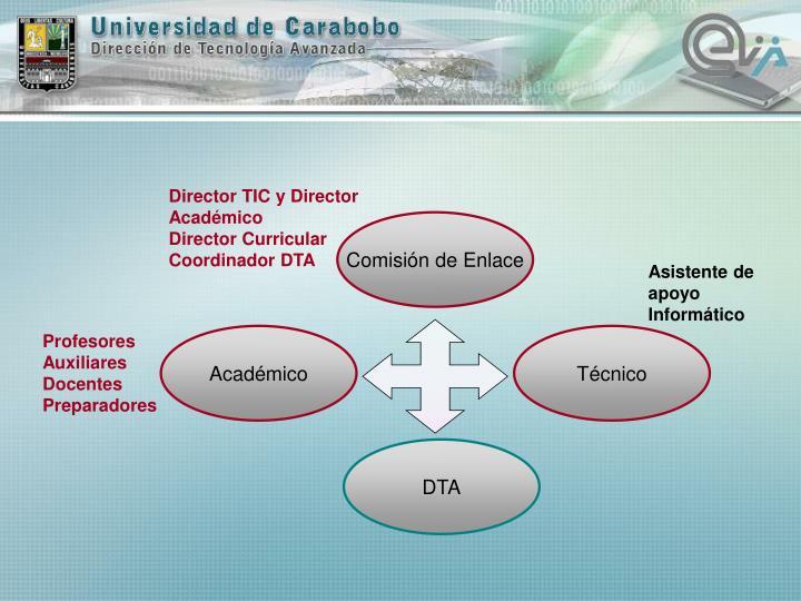 Director TIC y Director Académico