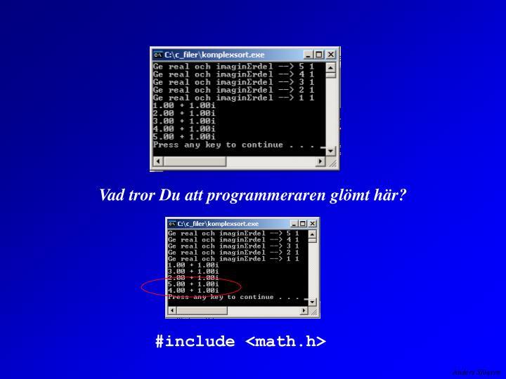 Vad tror Du att programmeraren glömt här?