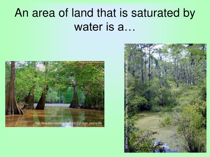 An area of land that is saturated by water is a…