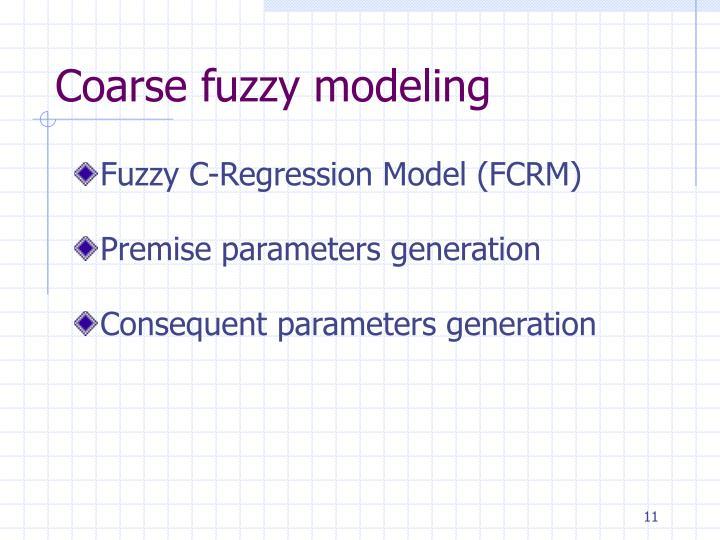Coarse fuzzy modeling