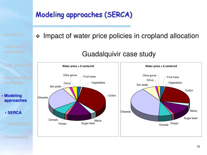 Modeling approaches (SERCA)