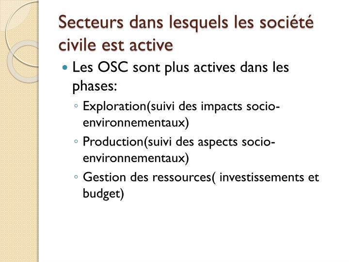 Secteurs dans lesquels les société civile est active