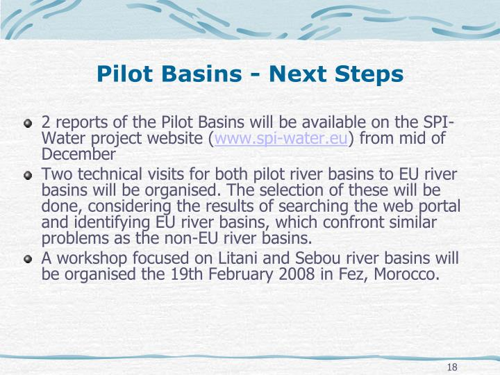 Pilot Basins - Next Steps