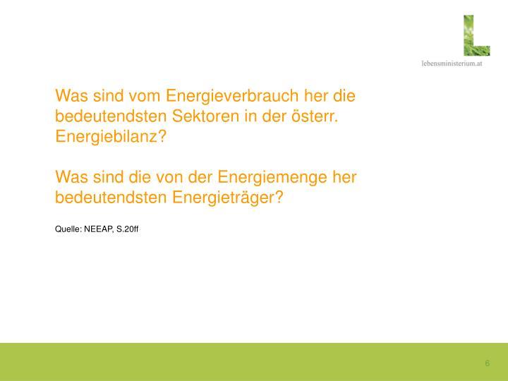 Was sind vom Energieverbrauch her die bedeutendsten Sektoren in der österr. Energiebilanz?