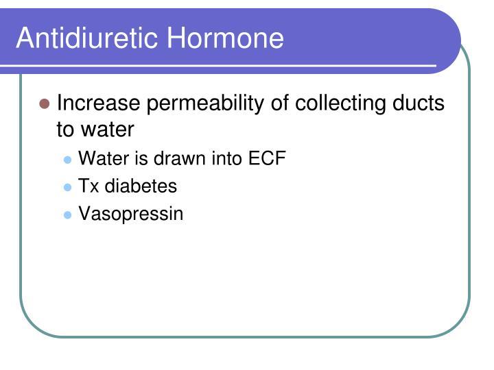 Antidiuretic Hormone