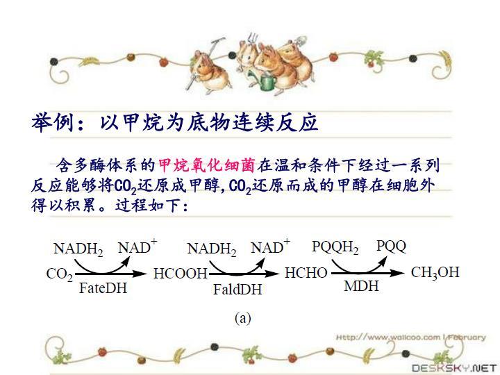 举例:以甲烷为底物连续反应