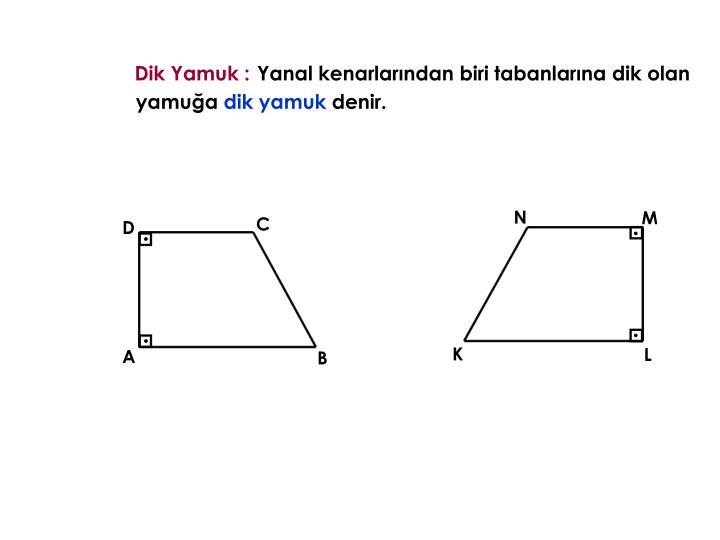 Dik Yamuk :