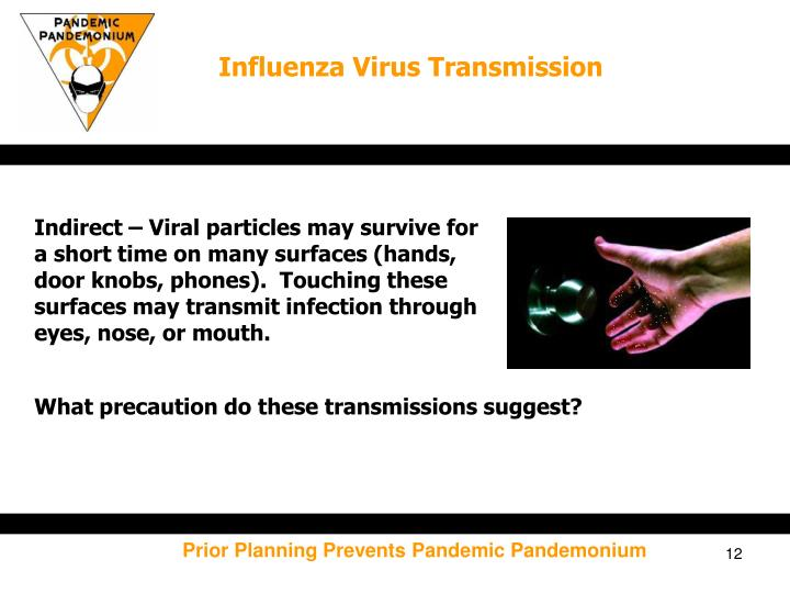 Influenza Virus Transmission