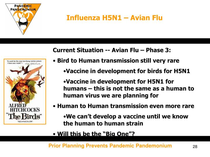 Influenza H5N1 – Avian Flu