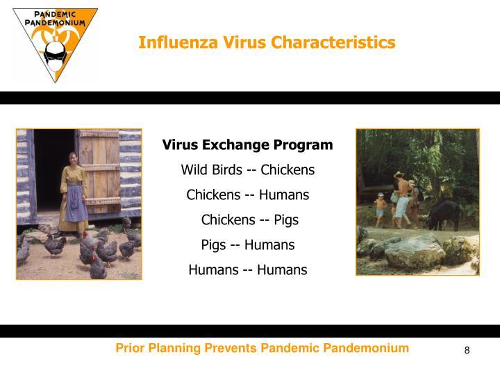 Influenza Virus Characteristics