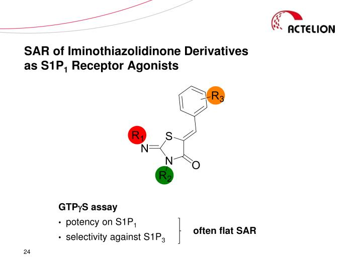 SAR of Iminothiazolidinone Derivatives