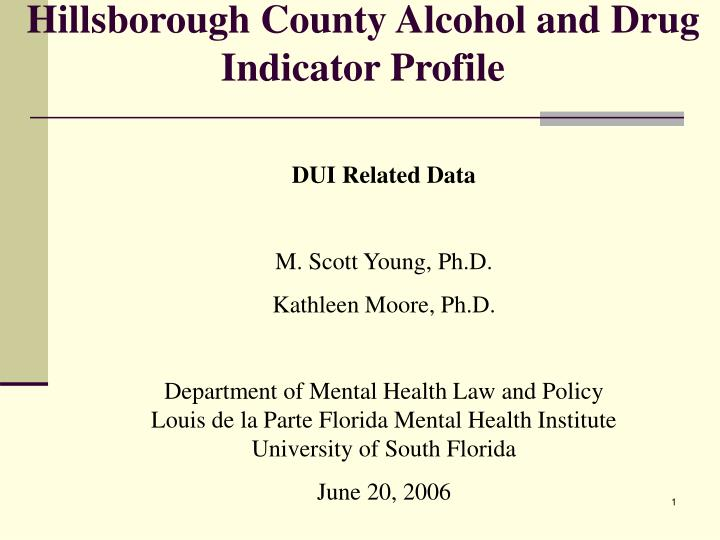 hillsborough county alcohol and drug indicator profile