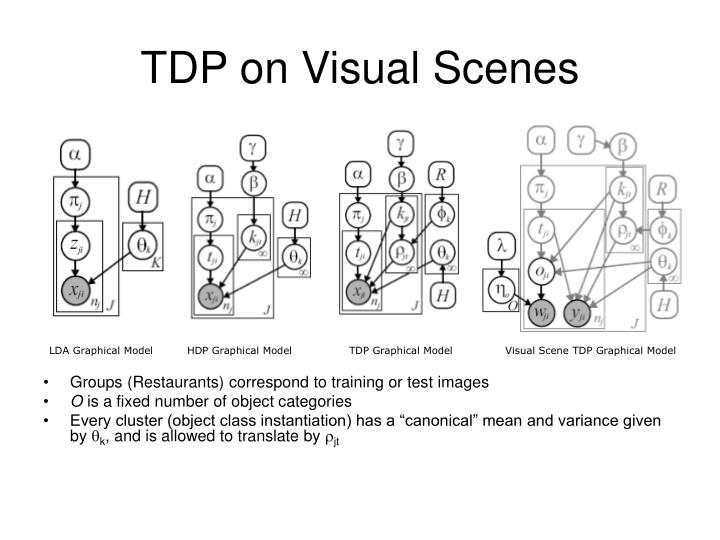 TDP on Visual Scenes
