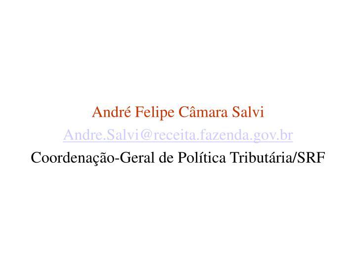 André Felipe Câmara Salvi
