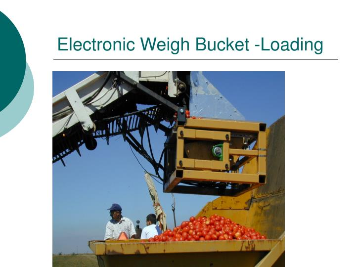 Electronic Weigh Bucket -Loading