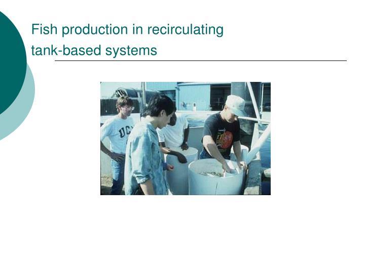Fish production in recirculating