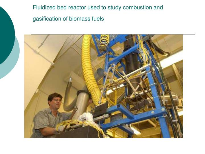 Fluidized bed reactor used to study combustion and gasification of biomass fuels