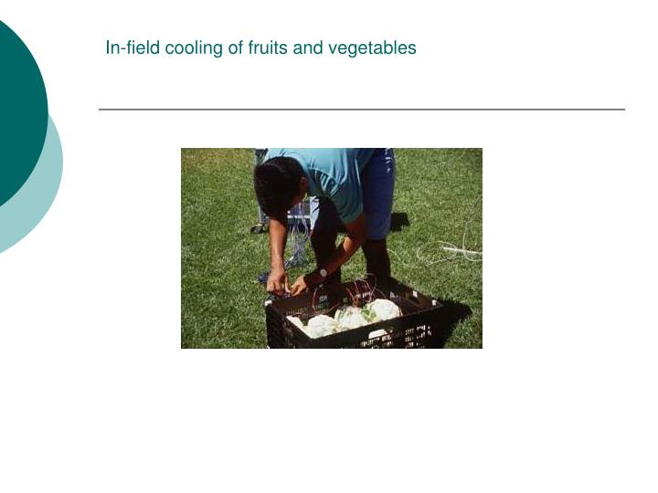 In-field cooling of fruits and vegetables