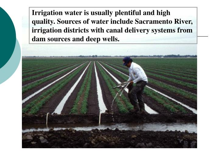 Irrigation water is usually plentiful and high quality. Sources of water include Sacramento River, irrigation districts with canal delivery systems from dam sources and deep wells.