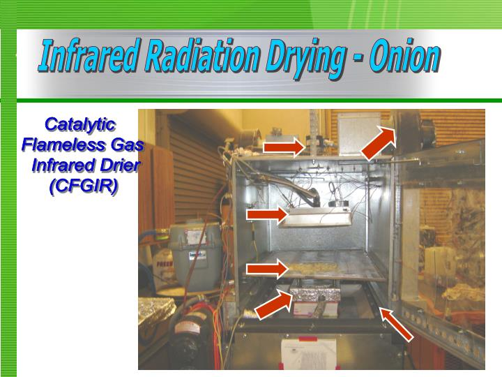 Infrared Radiation Drying - Onion