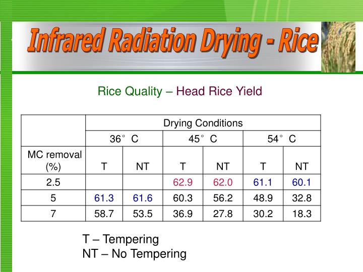 Infrared Radiation Drying - Rice