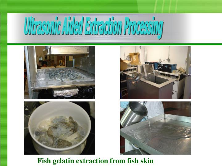 Ultrasonic Aided Extraction Processing