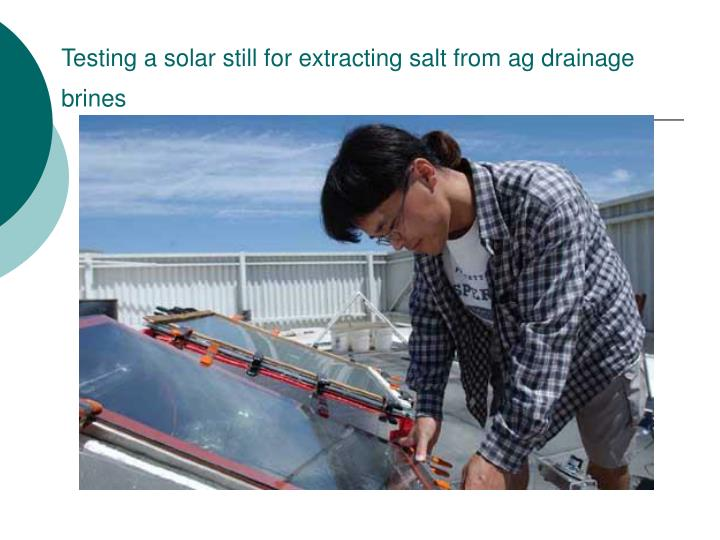 Testing a solar still for extracting salt from ag drainage brines