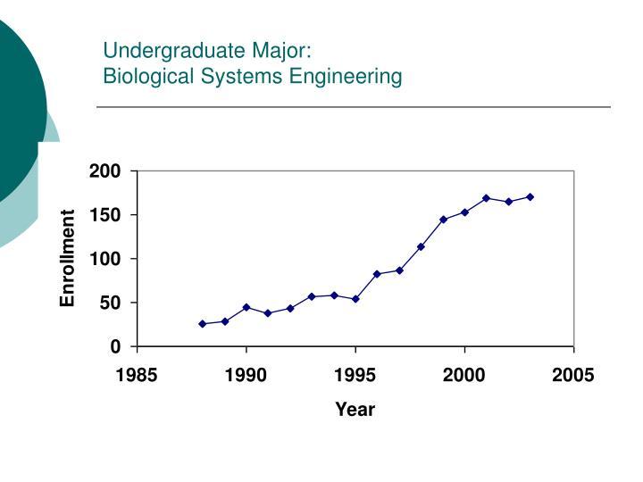 Undergraduate Major: