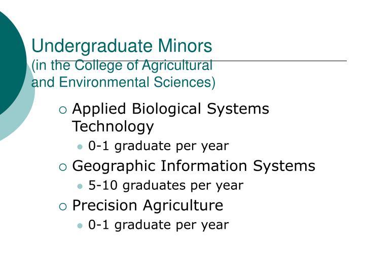 Undergraduate Minors