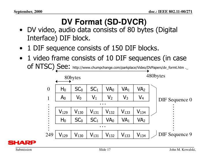 DV Format (SD-DVCR)