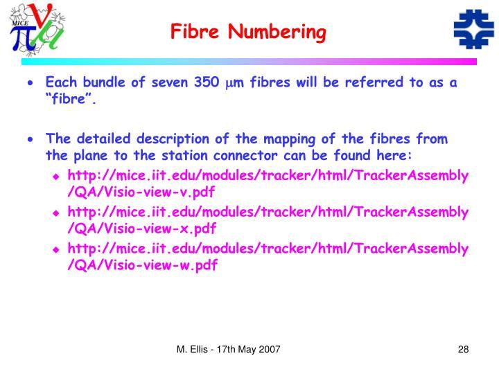 Fibre Numbering