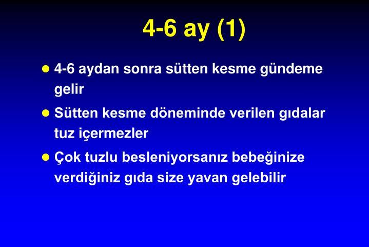 4-6 ay (1)